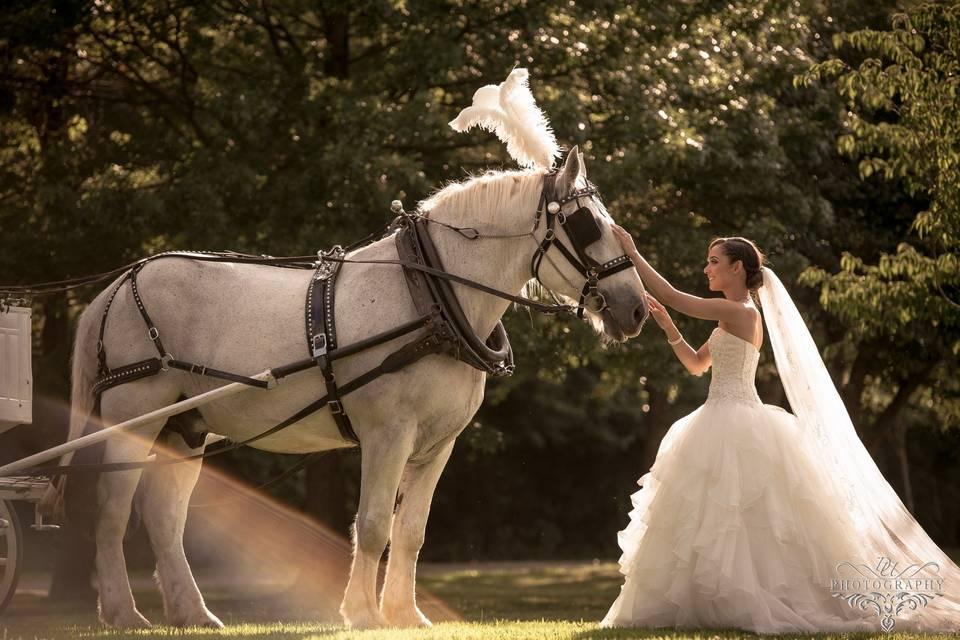 Fairy tale moment