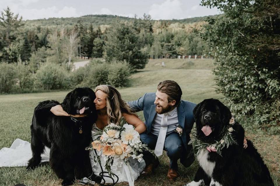Pawrents got married!