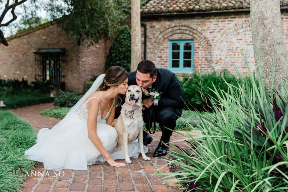 Pet-friendly wedding venue