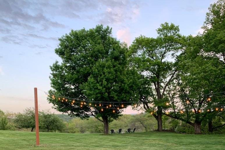 Nature with romantic lighting