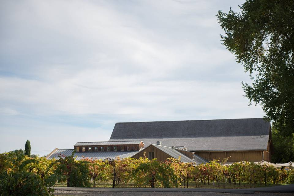 Madrone estate winery