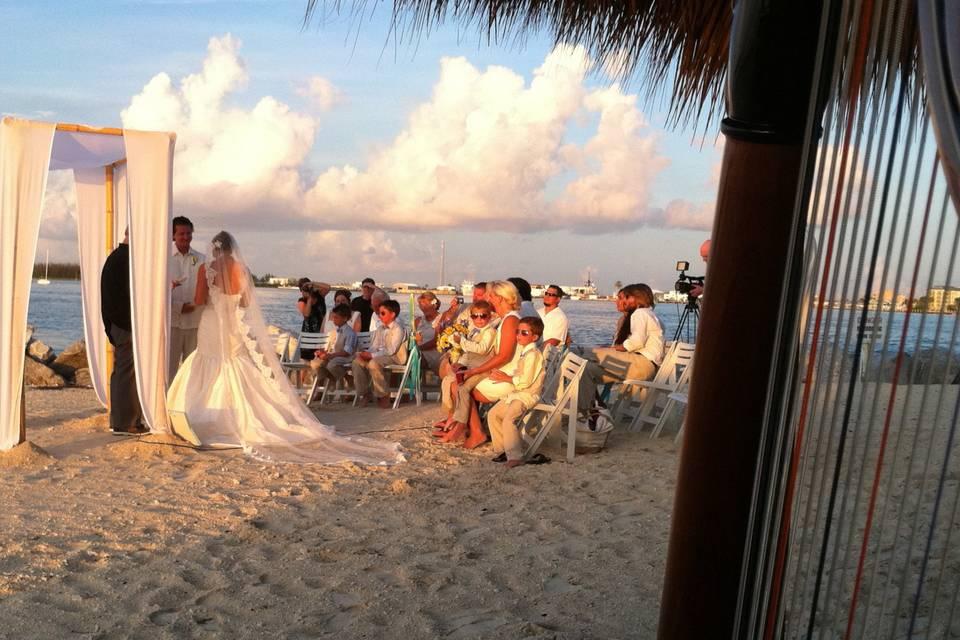 Key West Harpist