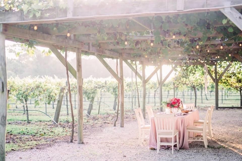 Fiorelli Winery