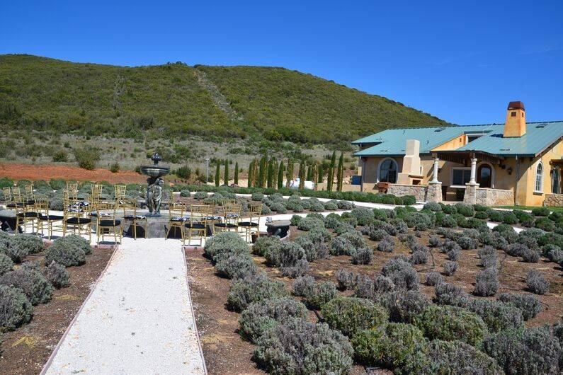 Thorn Hill Vineyards