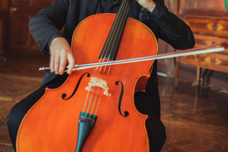 Solo cellist, phillip goist