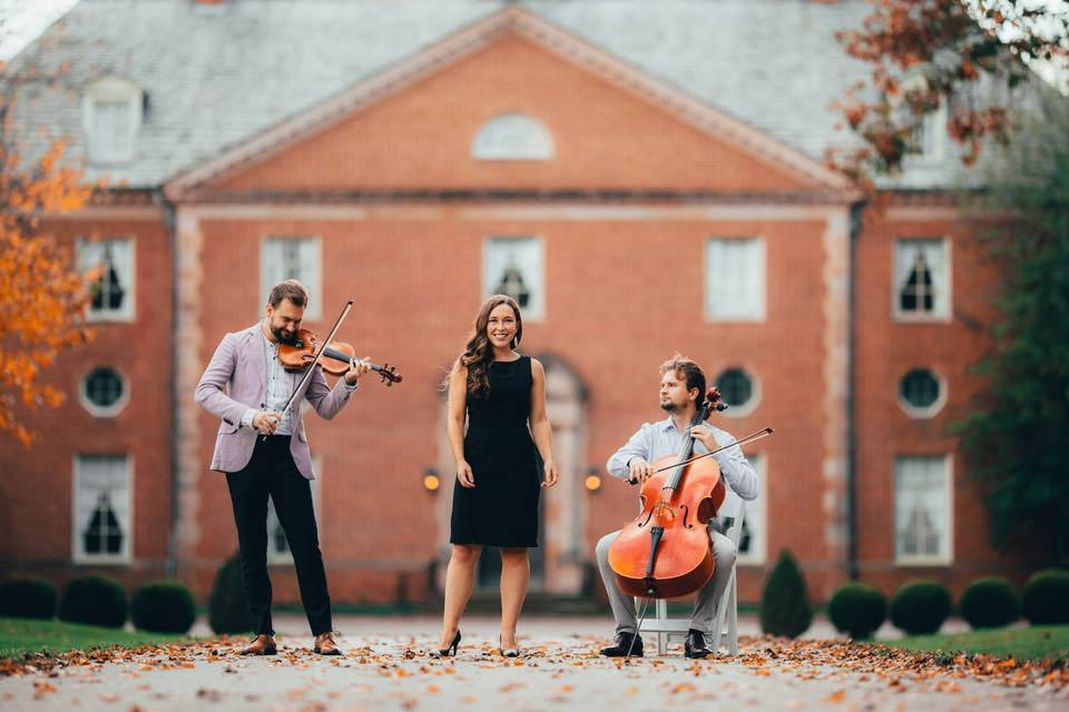 String duo with vocalist