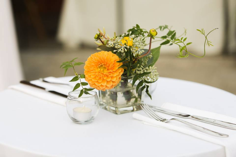 Cocktail table. J Hrbek Photos