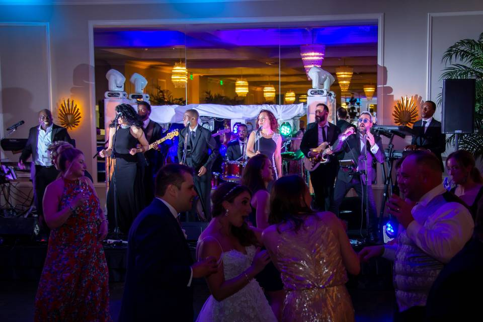 Palm Beach Wedding Band