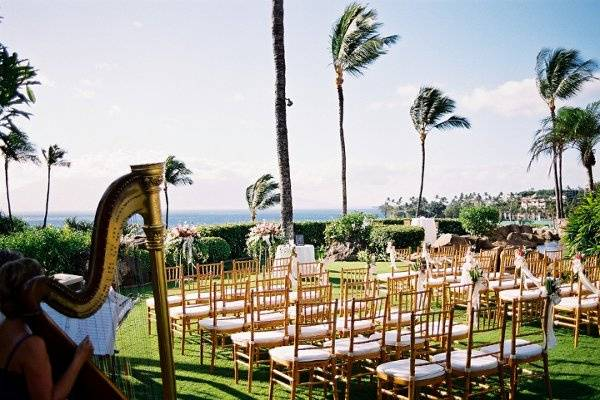 Harp Music adds elegance in this Tropical Location, Pacific Ocean in background, Four Seasons Resort Maui