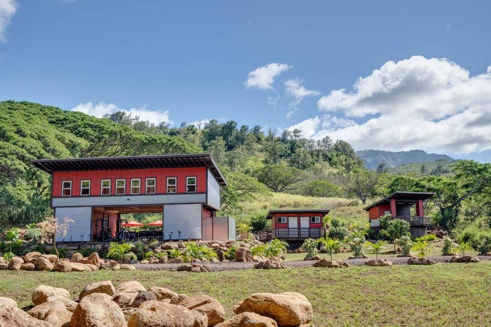 Holomua Farms