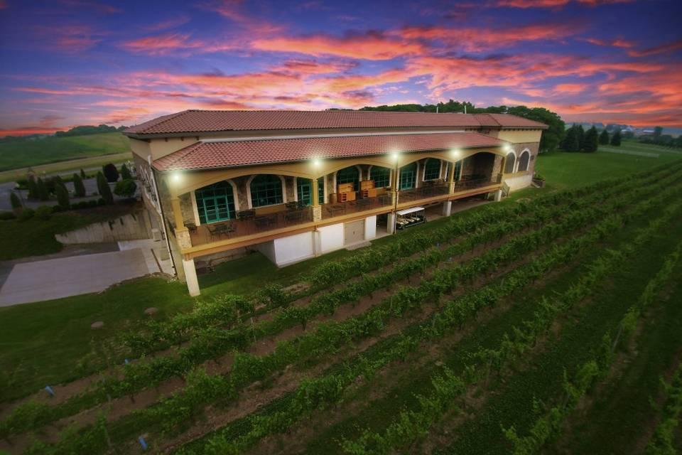 Ventosa Vineyards