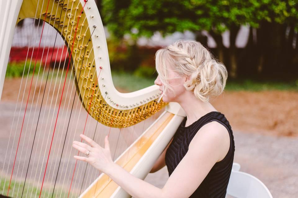 Annalisa Beninate - Harpist