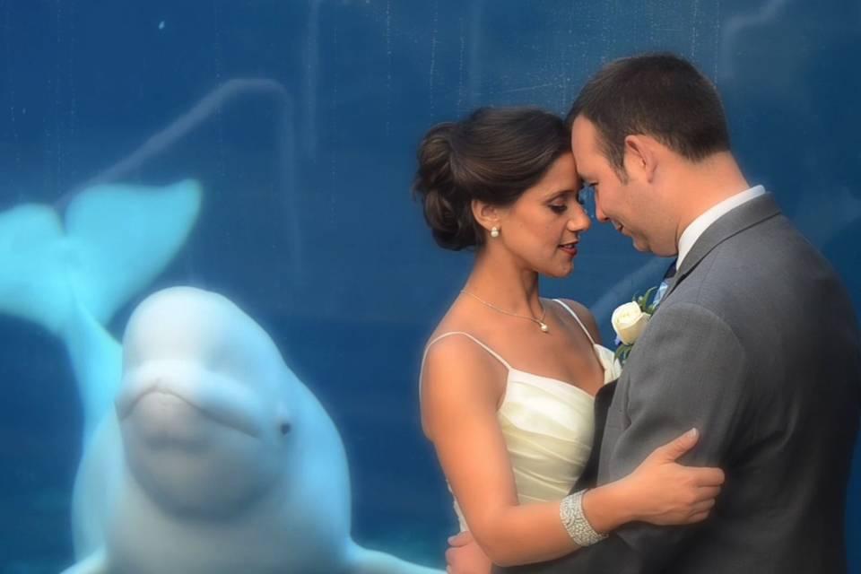 Connecticut Wedding Videos by PRCov