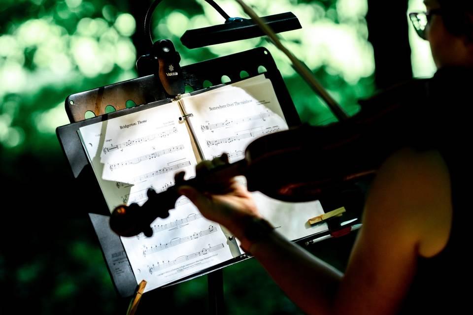 Solo violin @ outdoor ceremony