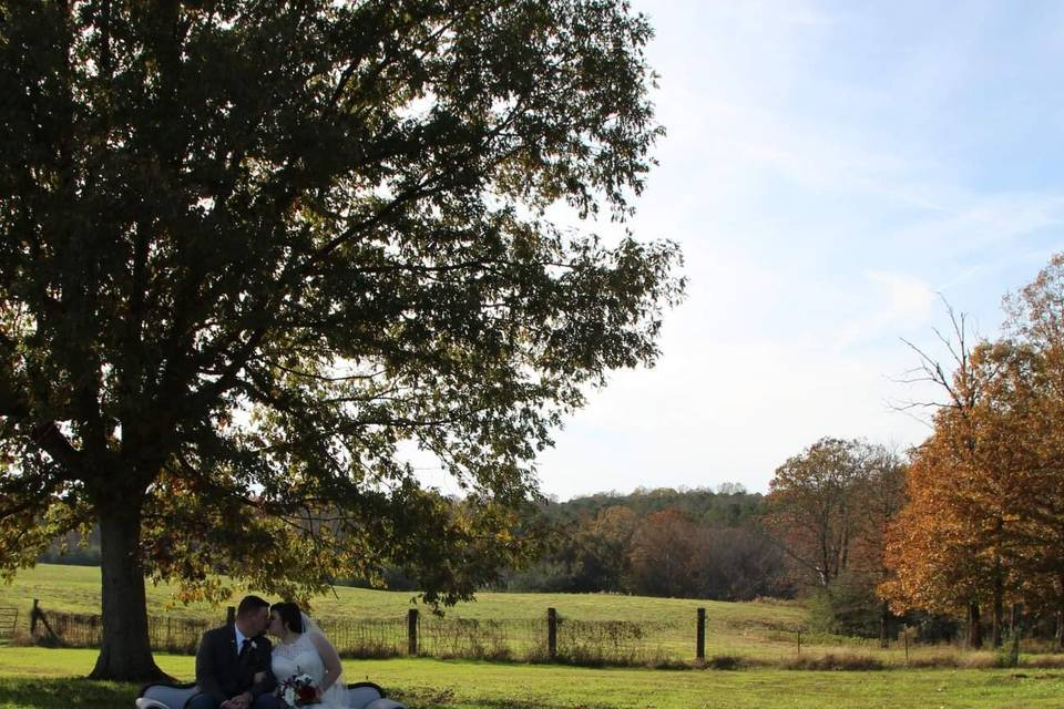 Tree Ceremony Site