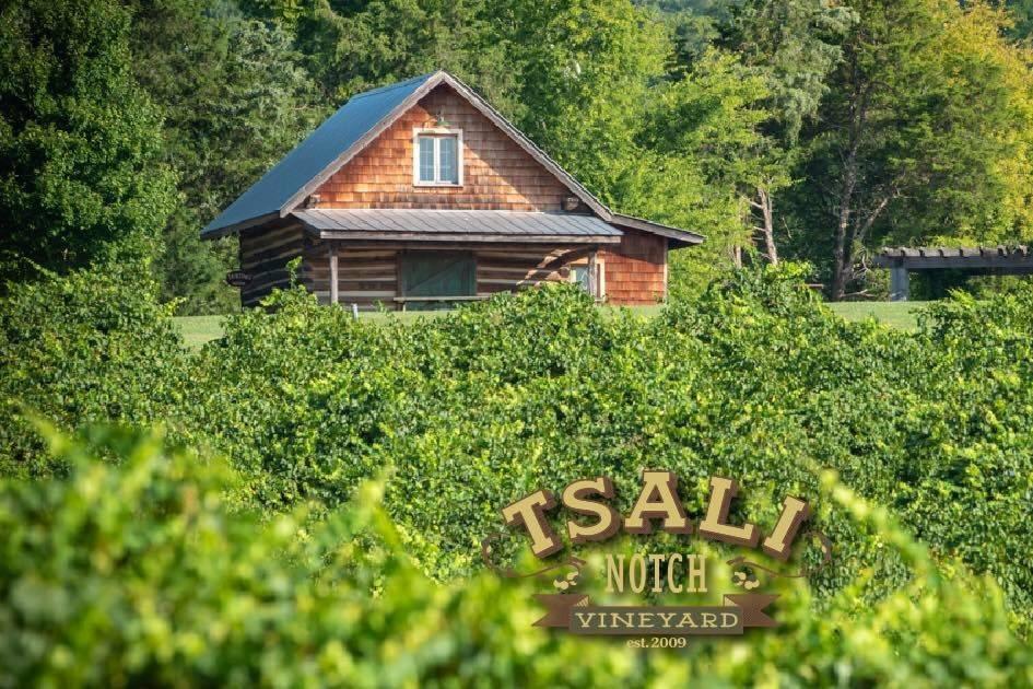 Tsali Notch Vineyard