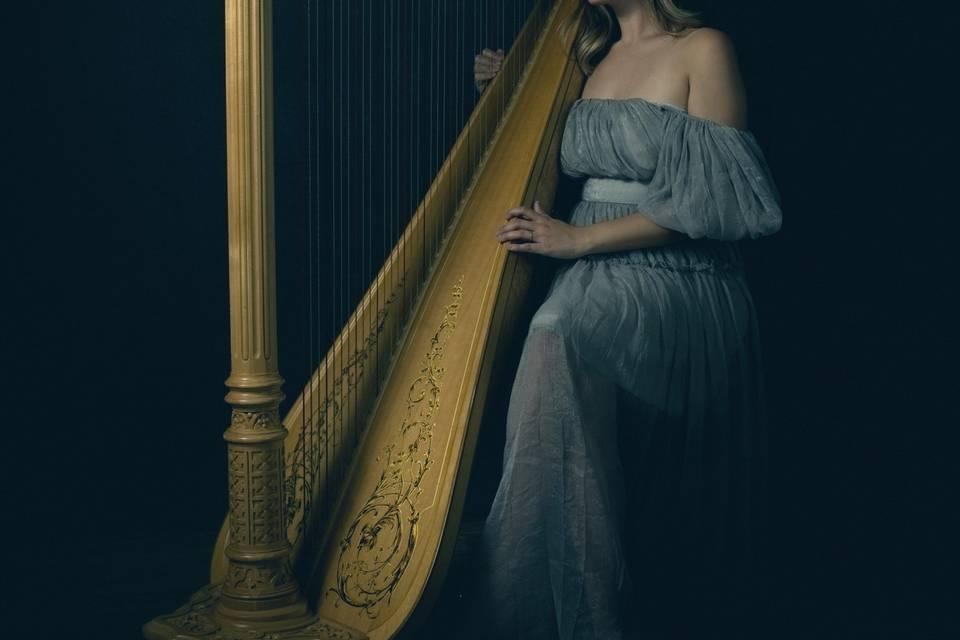 Professional Wedding Harpist