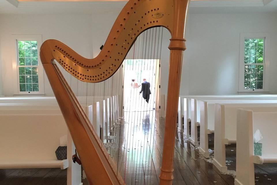 Happy through the harp