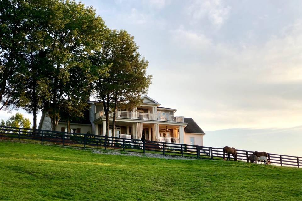 A & E Farm