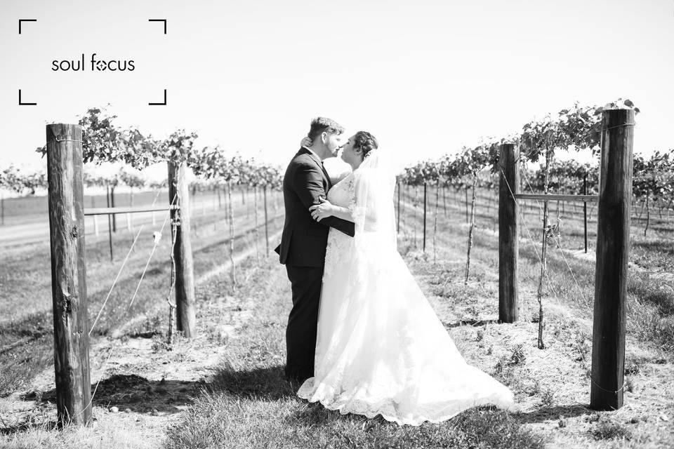 Vineyard Couples photo