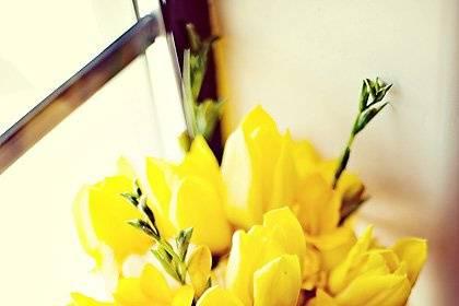 Tulips & Tangerines