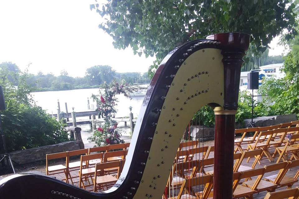 Harp at Ithaca Farmer's Market