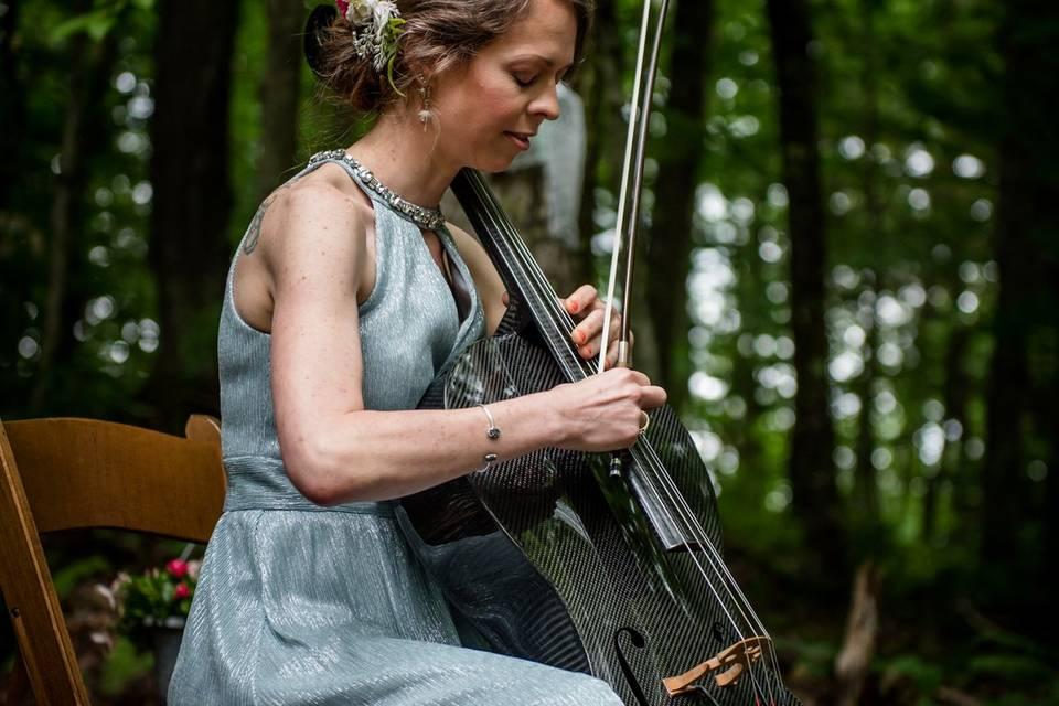 Mayfield Strings **