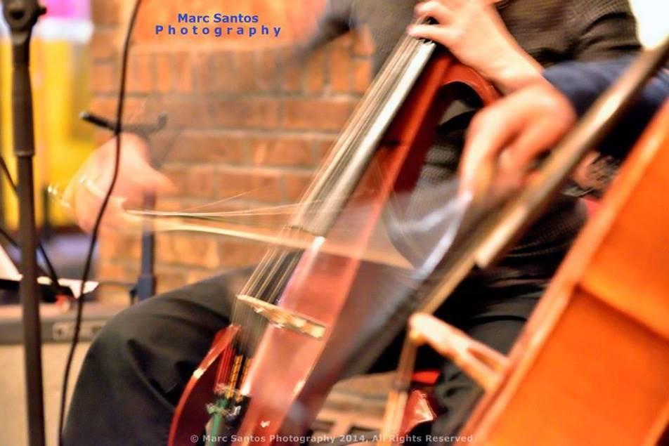 Mayfield Strings