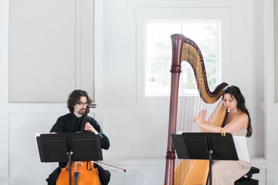 Lily Press, Harp & Simon Linn-Gerstein, Cello