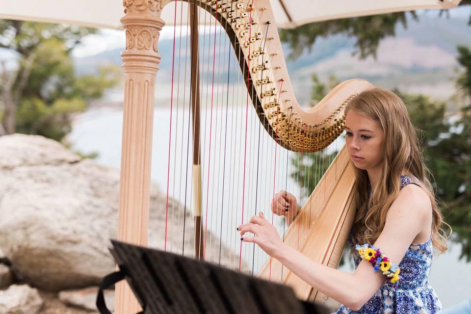 Claire Honl Harpist