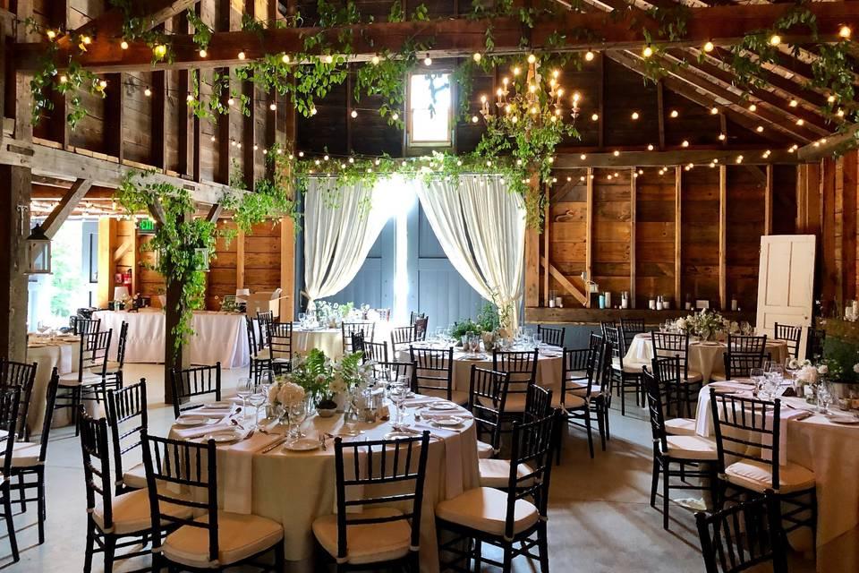 Elegant reception