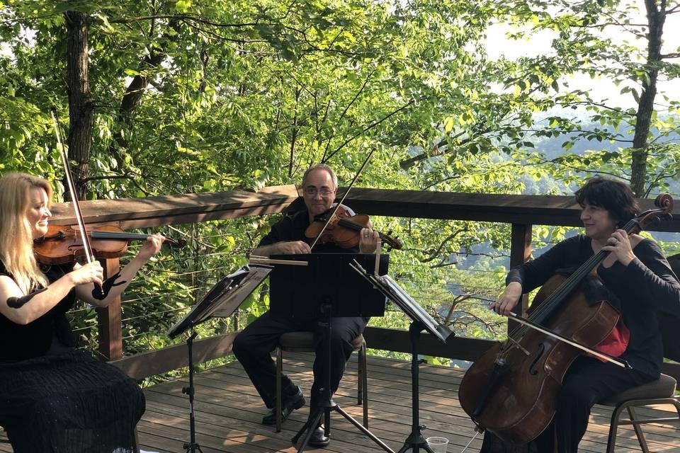 Montani Music Ensemble