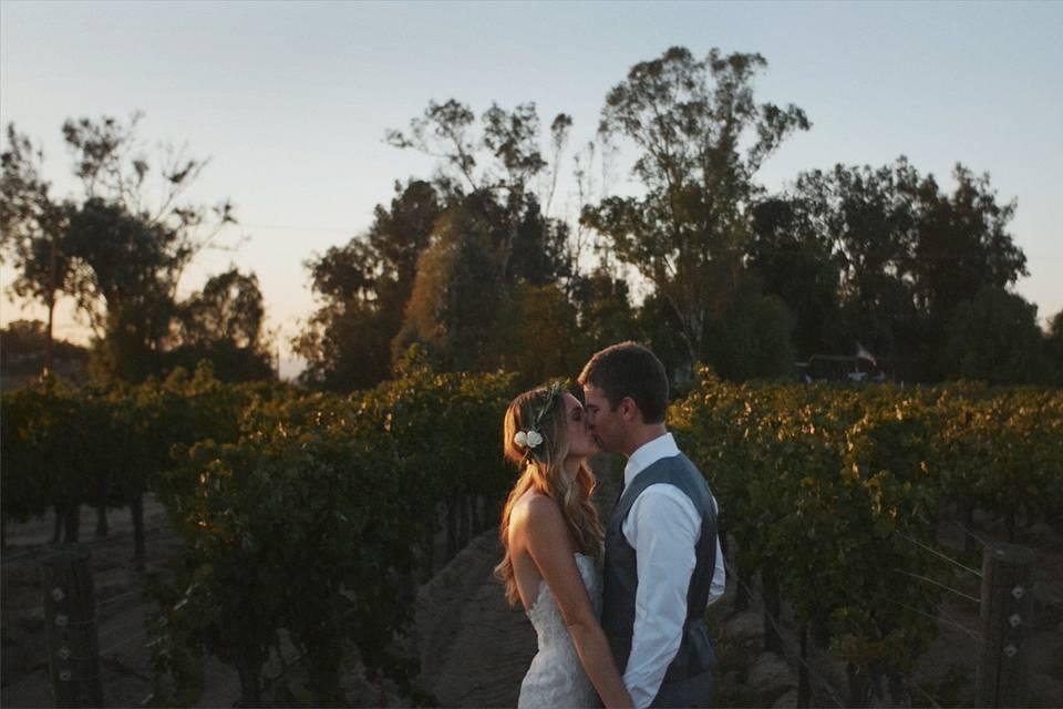 Forest Edge Weddings