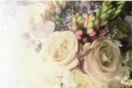 Petals & Lace Florals