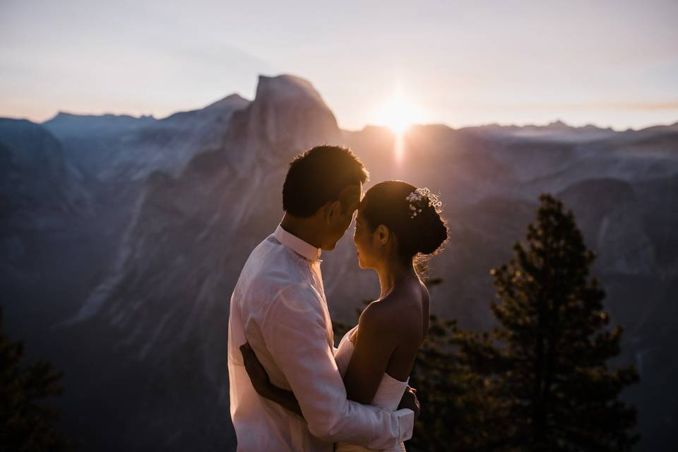 The Redwoods In Yosemite