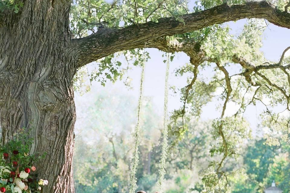 Couple under beautiful tree