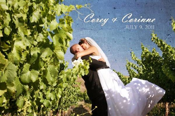 Temecula Winery Wedding Photo in the Vineyard