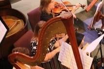 Eleganza Strings
