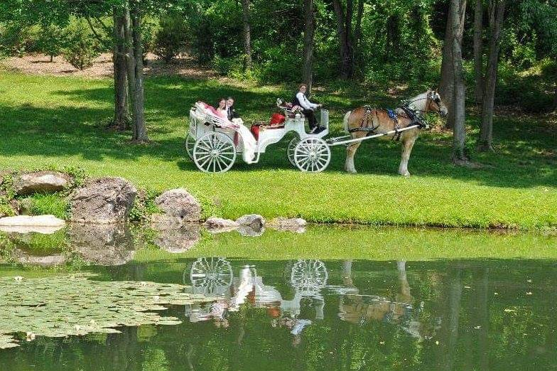 Pleasant Valley Dream Rides