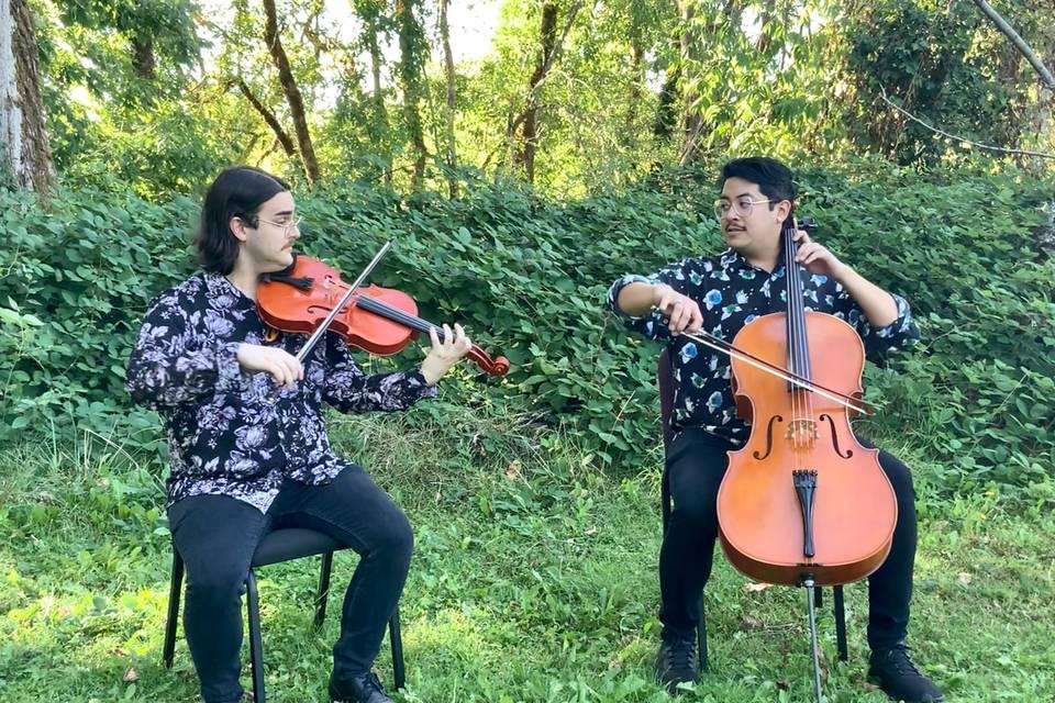 Viola/Cello Duo
