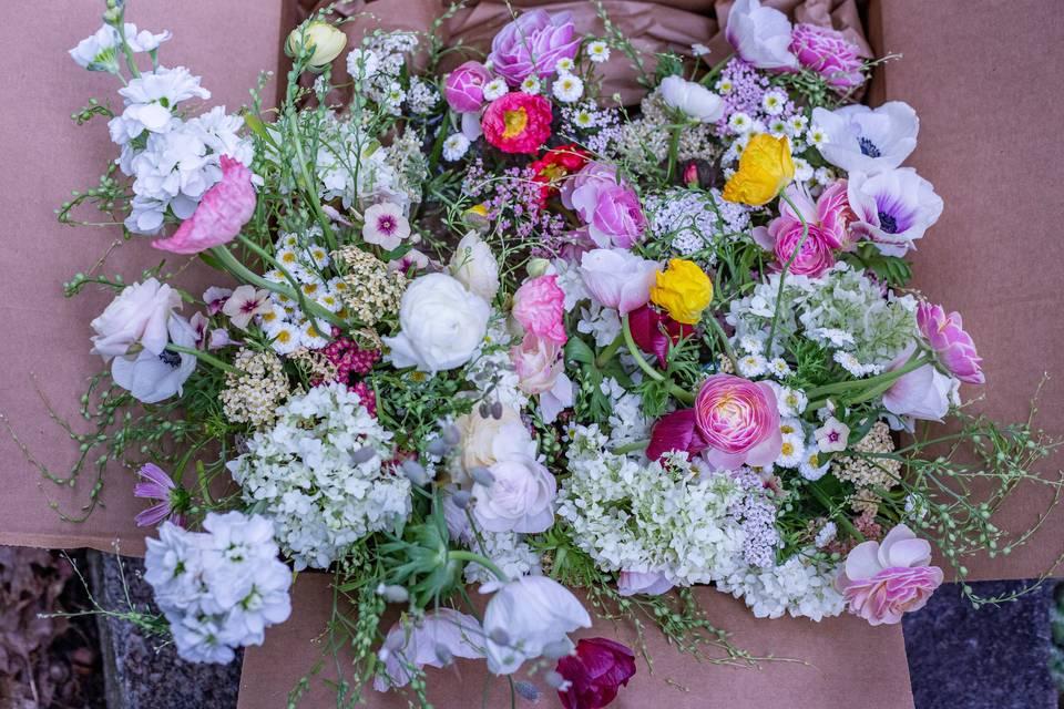 Fawn Meadow Flowers