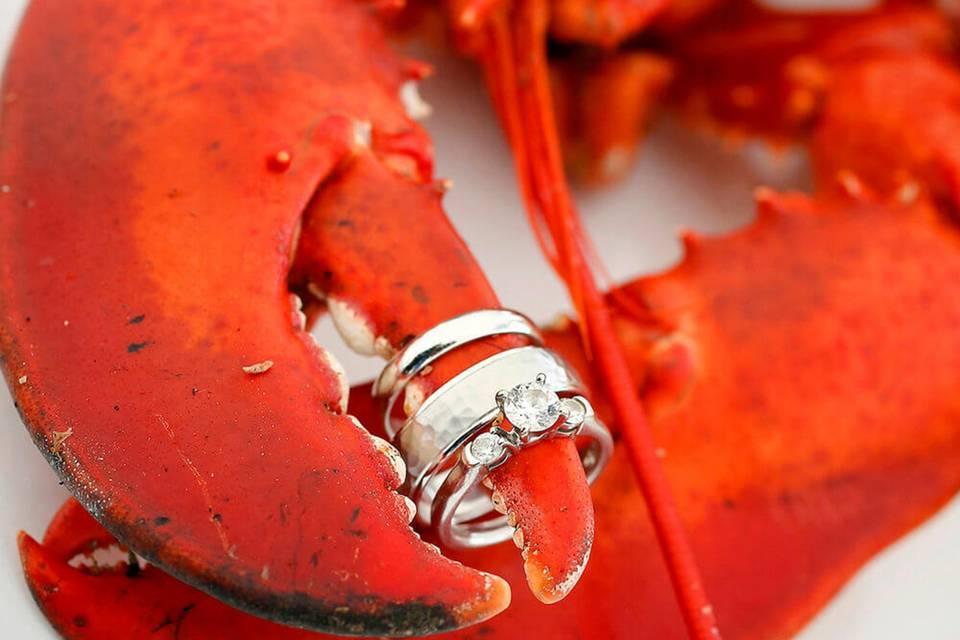 Lobster ring