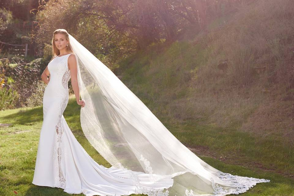 Amazing gown and matching veil