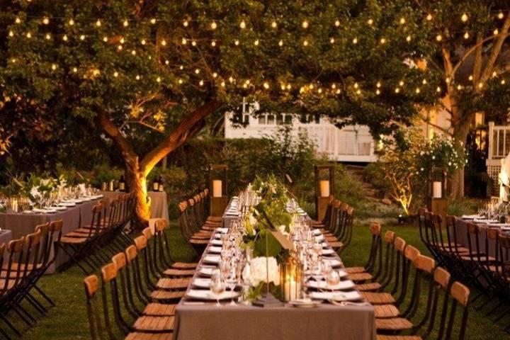 String lighting and verdant surroundings
