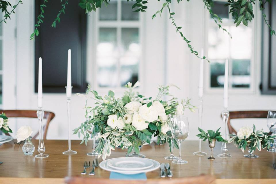 Kate Phillips Events