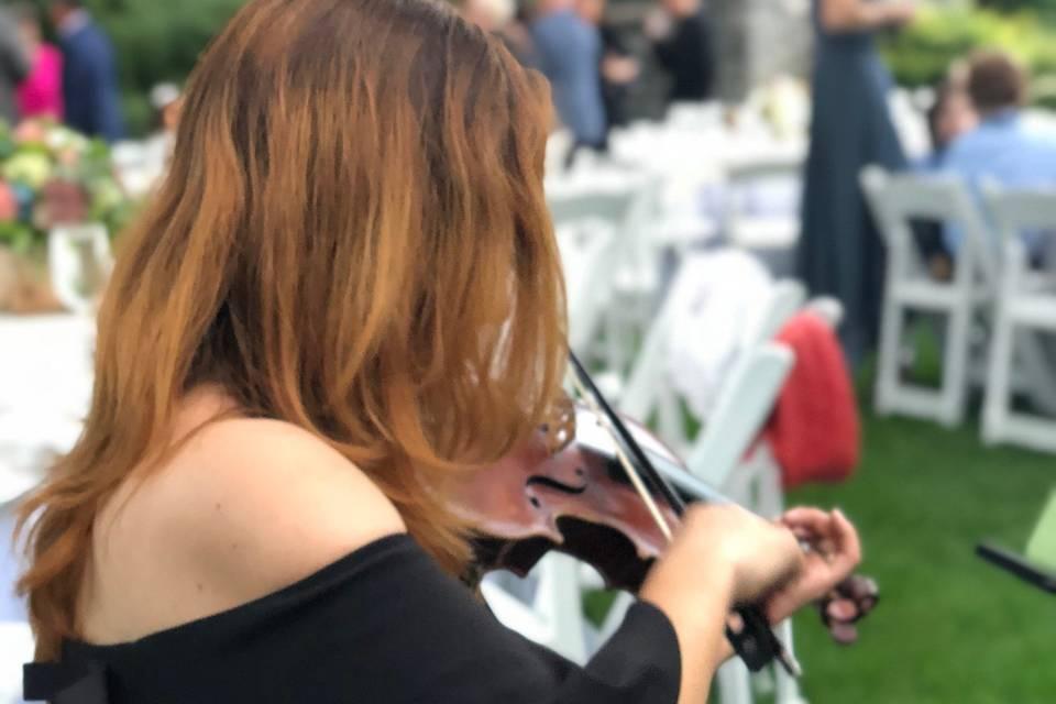 Solo Violinist always elegant