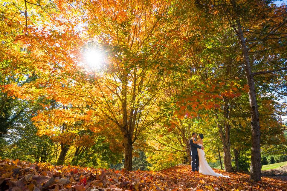 Newlyweds and the autumn leaves