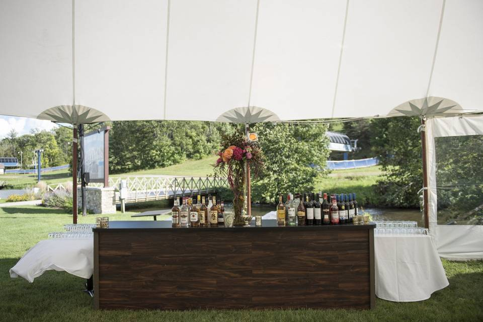 Outside Wedding summer of 2016 with full bar