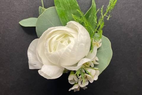 Ranunculus Bout
