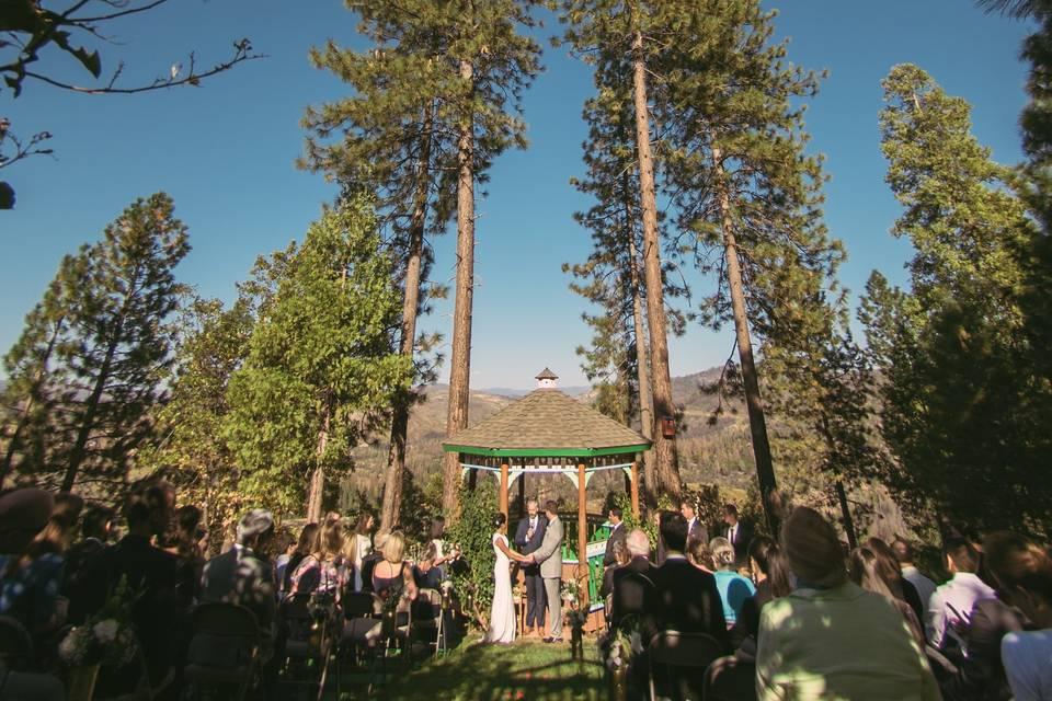 Big tree ceremony